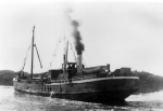 The Steam Ship Waiotahi